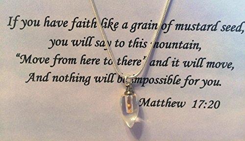 """Graines de moutarde en forme de larme sur chaîne de 50,8cm on/5x 7carte """"Si vous avez Faith"""" Matthew 17: 20V"""