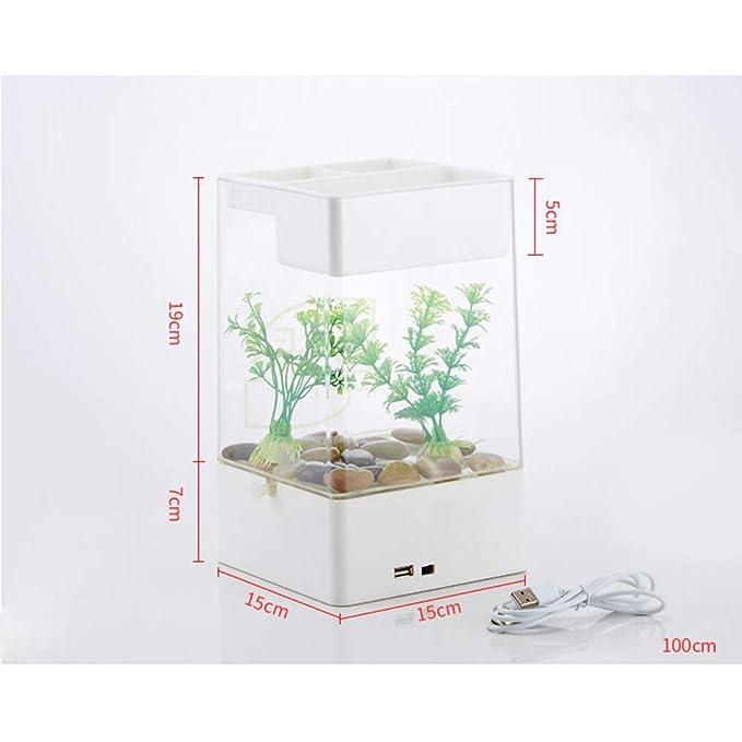 POPETPOP Mini Tanque de Peces de Acuario pequeño Acrílico Cambio de Agua Libre Tanque de Peces Transparente (Blanco): Amazon.es: Productos para mascotas