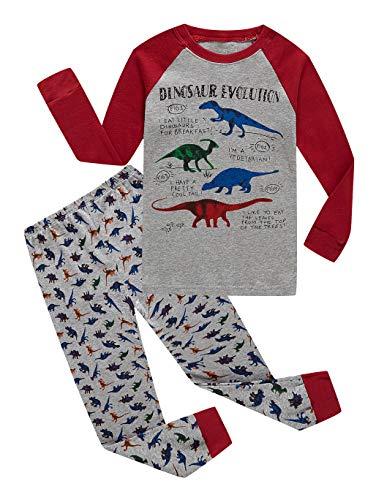 - Family Feeling Dinosaur Little Boys Long Sleeve Pajamas Sets 100% Cotton Pyjamas Kids Pjs Size 5 Dinosaur