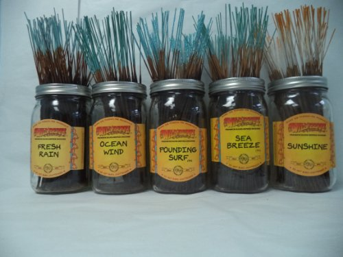 Incense Tropical (Wildberry Incense Sticks Tropical Set #1: 4 Sticks Each of 5 Scents, Total 20 Sticks!)