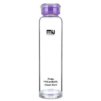 Botella de vidrio de frutas ecológica de 480 ml, de bisfenol A,