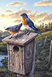 Toland Home Garden Eastern Bluebird Birdhouse 28 x 40 Inch Decorative Sunrise Field Bird House Flag