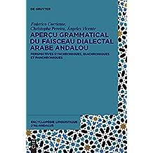 Apercu grammatical du faisceau dialectal arabe andalou: Perspectives synchoniques, diachroniques et panchroniques