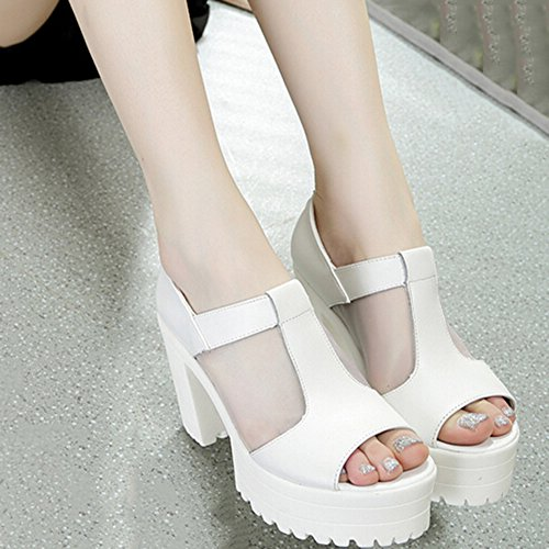 Sprit (Platform Polyurethane Shoes)