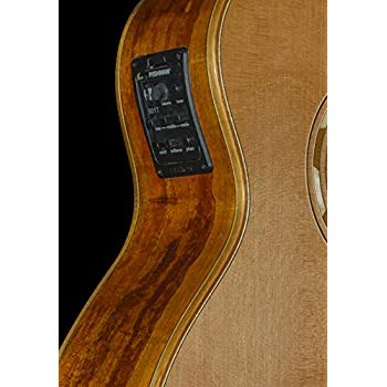 Natural Washburn Wlg16s Grand Auditorium 6-string Acoustic Guitar Musical Instruments & Gear