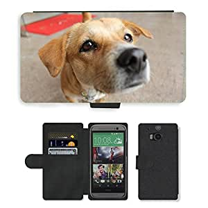 Hot Style Cell Phone Card Slot PU Leather Wallet Case // M00112116 Pet Dog Lizardfish Dog // HTC One M8