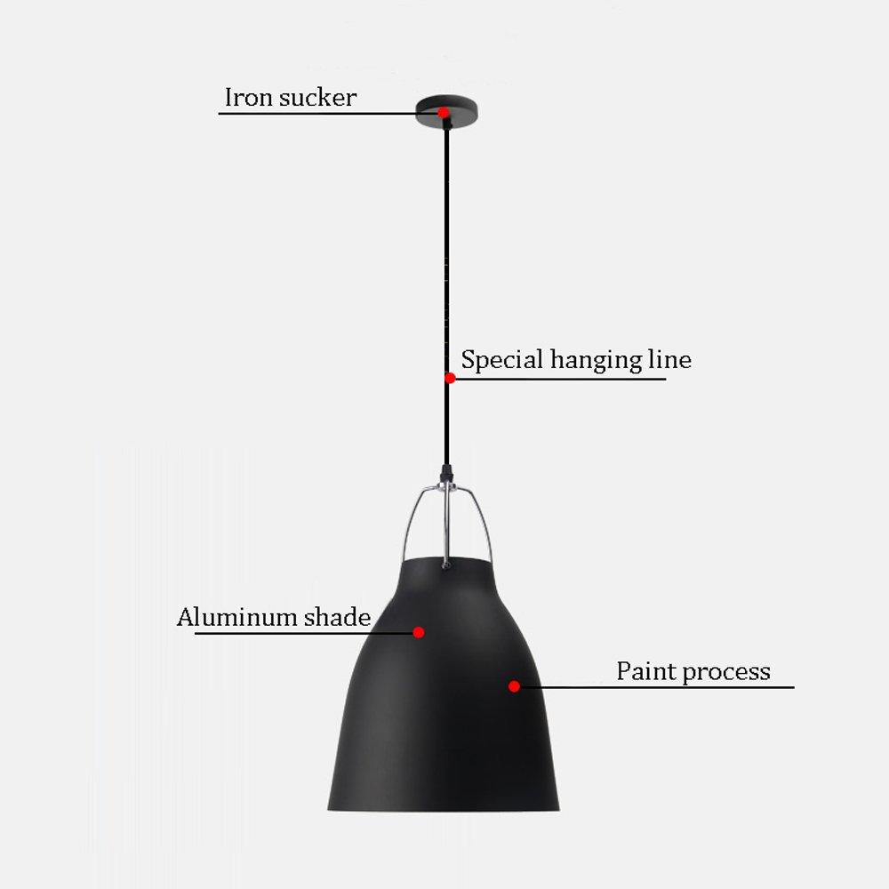 Amazon.com: Ganeep Ganeep - Lámpara de techo para dormitorio ...