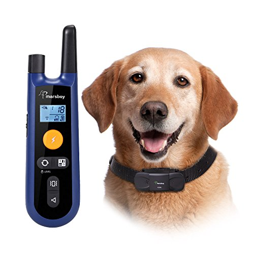Dog Shock Collar To Keep Dog Away From Cats