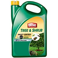 Ortho Tree and Shrub Insect Control Plus Miracle-Gro Plant Food Concentrate (Systemic Insecticide Fertilizer)