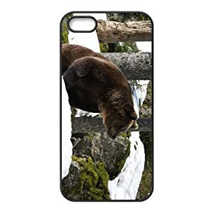 Black Bear Hight Quality Plastic Case for Iphone 5s