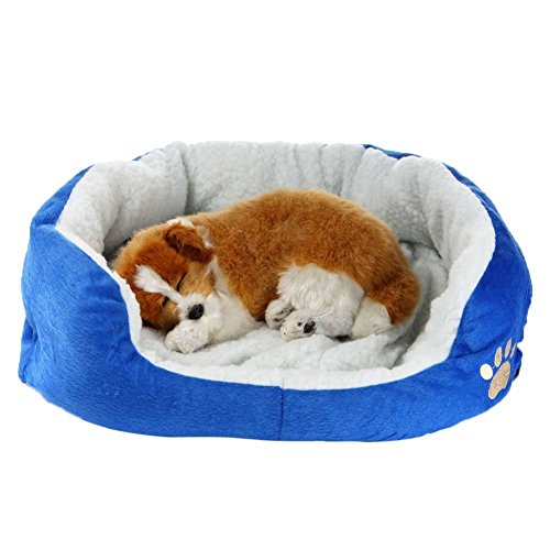 - Molly Round Pet Dog Bed for Cats & Dogs with Non-Slip Waterproof Bottom, Cozy Plush Cushion   Ultra Soft & Comfortable Indoor Cat Bed   High-Walls for Improved Sleep,Blue,M
