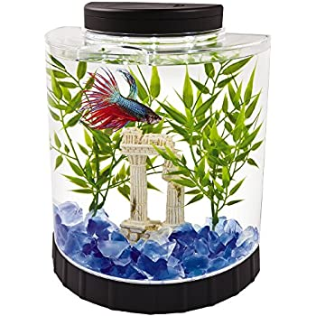 Back to the roots water garden live indoor for Betta fish tanks amazon