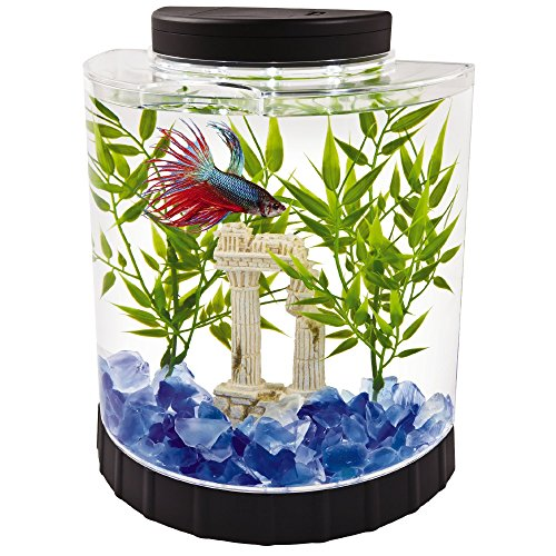 Double Tank Wall - Tetra LED Half Moon Betta Aquarium, Betta Fish Tank (29049)