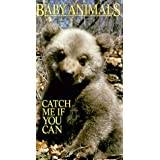 Baby Animals: Catch Me If You Can