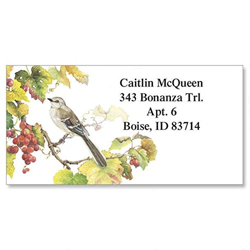 Colorful Address Labels (Songbirds Self-Adhesive, Flat-Sheet Border Address Labels (6 Designs))