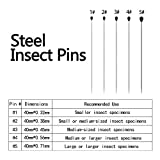 500 Pieces Stainless Steel Insect Pins Specimen