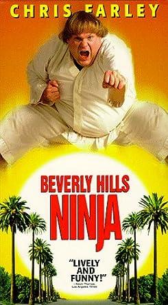 Beverly Hills Ninja [Alemania] [VHS]: Amazon.es: Chris ...