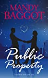 Public Property: A cozy romance with a dash of Christmas mystery (Freya Johnson Book 2)