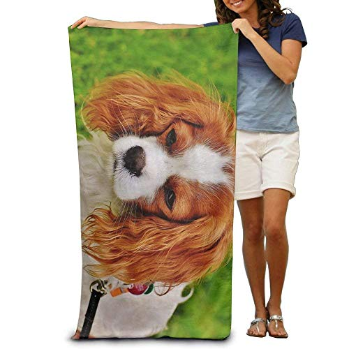 - meageahe Promotional Cavalier King Charles Spaniel Oversized Beach Towel Pool Towel,Swim Towels for Bathroom,Gym,and Pool 31x51 intch