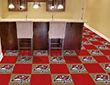 NFL - Tampa Bay Buccaneers Carpet Tiles