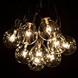 Hometown Evolution, Inc. Outdoor Globe String Lights (100 Foot, G50 Clear - Black Wire - 2 Inch 7 Watt Bulbs)