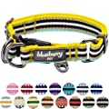 Blueberry Pet 15 Colors 3m Reflective Multi Colored Stripe Adjustable Dog Collar Yellow And Azure Large Neck 18 26