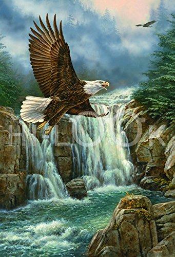 Hi-Look Microfiber Cleaning Cloth - Majestic Flight - Eagle - Majestic Eagle Flight