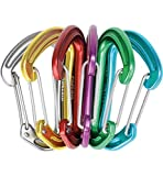 EDELRID - Nineteen G Carabiners, 6-Pack, Assorted