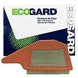 Ecogard XA6165 Air Filter
