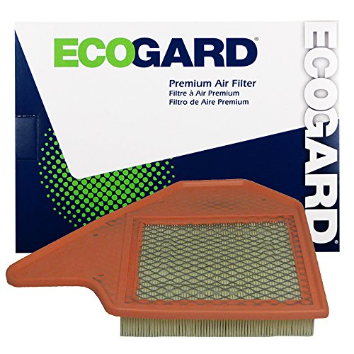 ECOGARD XA6165 Premium Engine Air Filter Fits Dodge Grand Caravan / Chrysler Town & Country / Ram C/V / Volkswagen Routan (Chrysler Engine)
