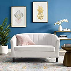 Farmhouse Living Room Furniture Modway Prospect Channel Tufted Upholstered Velvet Loveseat, White farmhouse sofas and couches