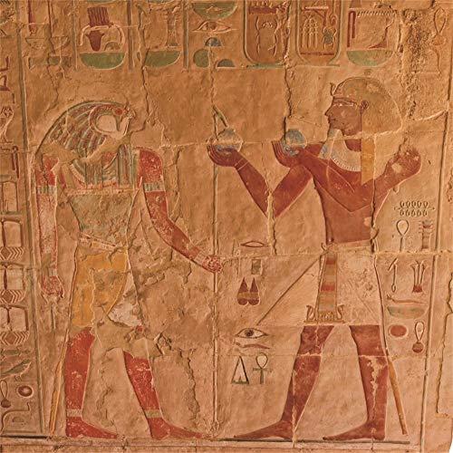 AOFOTO 8x8ft Fresco Egyptian Backdrop Ancient Relief Horus Egypt Historic Culture Color Images Photography Background Travel Portrait Shooting Museum History Course Video Displays Photo Studio ()