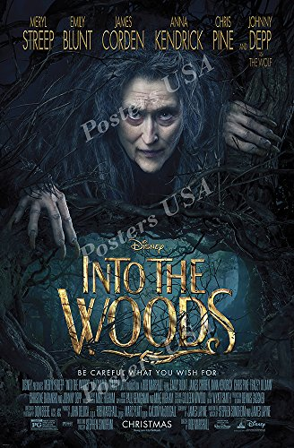 Poster USA - Disney Classics Into the Woods Poster GLOSSY FI
