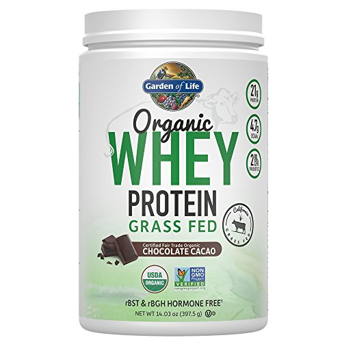 Garden of Life Protein Powder - Organic Whey Protein Powder, Grass Fed, Chocolate, 14.03 oz (379.5g) Powder (Organic Grass Fed Whey Protein)