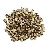 uxcell 150 Pcs 3/8-16 Bronze Tone Stainless Steel Thread Rivet Nut Insert Nutserts