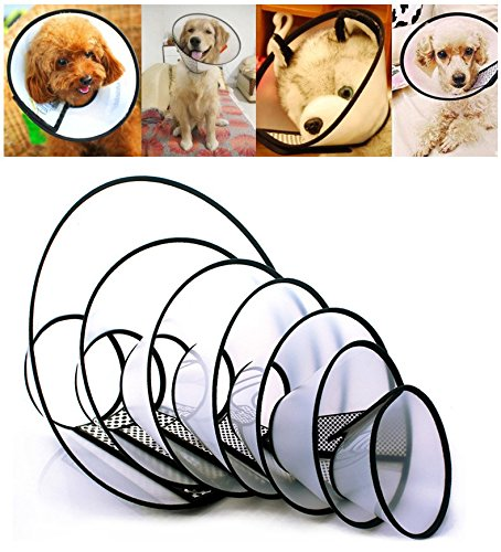 Accentory Adjustable Dog Recovery Collar Plastic Elizabethan Collar for Cats and Dogs (Collar 19in, Depth 11in)