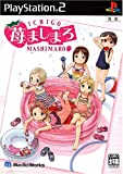 Ichigo Mashimaro [Japan Import]