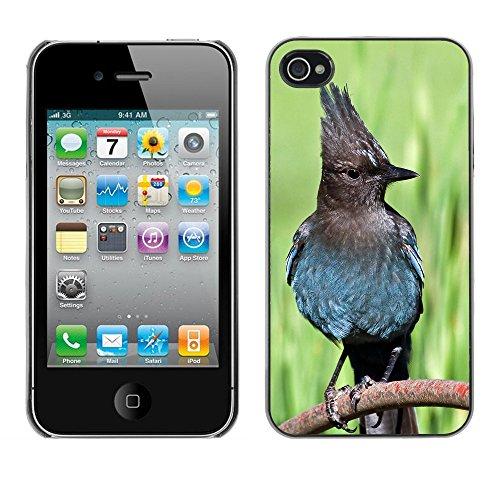 Premio Sottile Slim Cassa Custodia Case Cover Shell // F00014393 Steller Jay // Apple iPhone 4 4S 4G