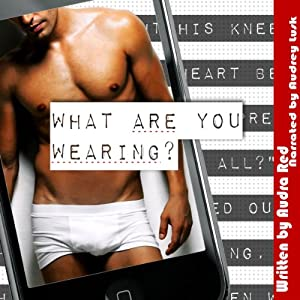 What Are You Wearing? Audiobook