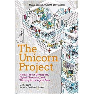 The Unicorn Project