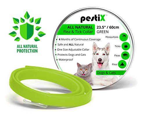 ALL Natural Essential Oil Flea Prevention Collar for Dogs and Cats | Collar Prevents, Controls, Removes & Repels Pests | One Size Adjustable Collar for Your Dog & Cat with 4 Months Protection | Green