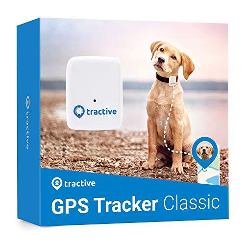 Tractive Localizador GPS para perros – Rastreador con rango ilimitado, Blanco (TRATR1)