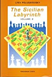 img - for The Sicilian Labyrinth, Vol. 2 (Pergamon Russian Chess Series) by Lyev Polugayevsky (1991-06-01) book / textbook / text book