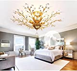 IJ INJUICY K9 Crystal Chandelier Led Ceiling Light