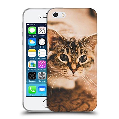 Just Phone Cases Coque de Protection TPU Silicone Case pour // V00004229 gris tacheté chat sur le tapis // Apple iPhone 5 5S 5G SE