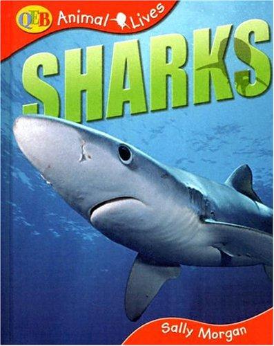 - Sharks (QEB Animal Lives)