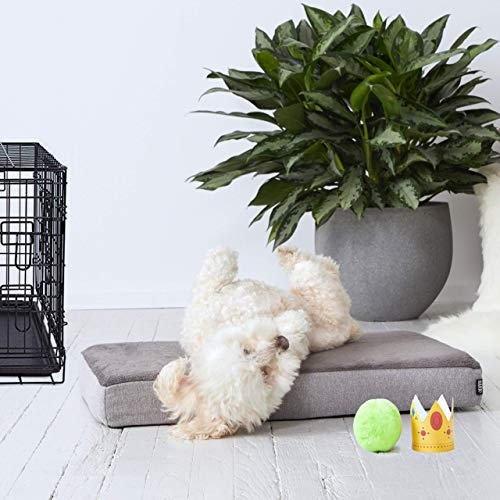 8 Lb Memory Foam - BarkBox Small Gray 3 Inch Tall Orthopedic Memory Foam Dog Bed or Crate/Kennel Mat - Removable Washable Fleece Cover - Free Surprise