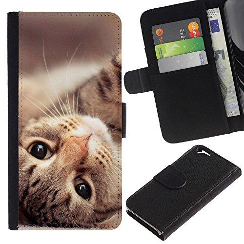 EuroCase - Apple Iphone 6 4.7 - Maine coon cat American shorthair - Cuir PU Coverture Shell Armure Coque Coq Cas Etui Housse Case Cover