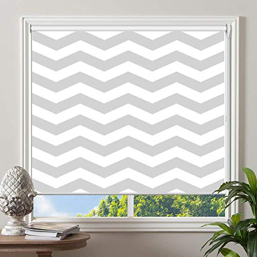 PASSENGER PIGEON Blackout Window Shades, Premium UV Protection Water Proof Custom Roller Blinds, Printed Picture Window Roller Shade, 69″ W x 64″ L, JIHE-3