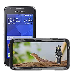 GoGoMobile Slim Protector Hard Shell Cover Case // M00118781 Lizard Nature Animals // Samsung Galaxy Ace4 / Galaxy Ace 4 LTE / SM-G313F